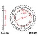 Звезда задняя JT JTR300.48