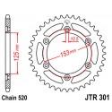 Звезда задняя JT JTR301.40